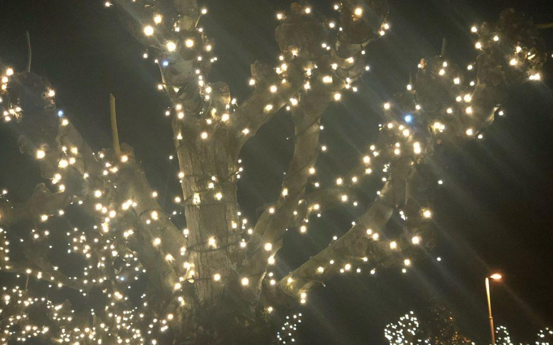 Diamo luce a questo Natale!